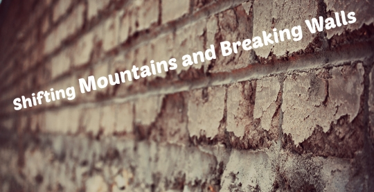mountains_devo-process-s600x-q100-t1381115515