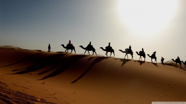 desert-caravan_00449866